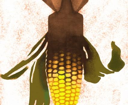 OGM et destruction des sols naturels
